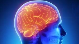 comment diminuer considérablement les risques de la maladie d'Alzheimer