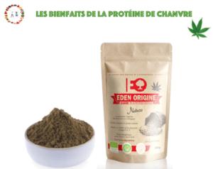 La protéine de chanvre bienfaits et utilisations