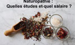 Naturopathie Quelles études et quel salaire